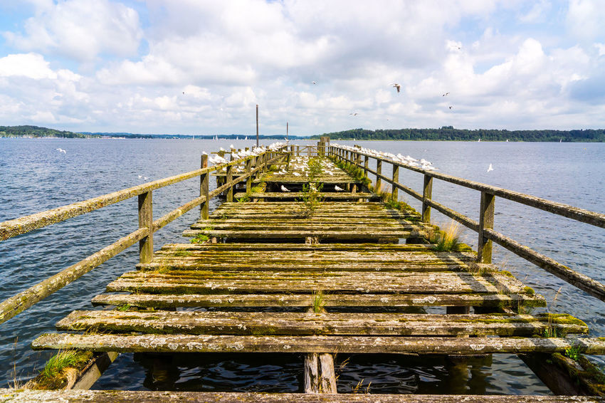 Der Steg Beauty In Nature Cloud - Sky Day Horizon Over Water Jetty Nature No People Outdoors Pier Scenics Sea Sky Tranquil Scene Tranquility Water Wood Paneling