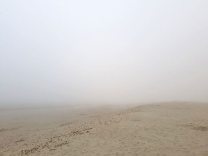 fog at the