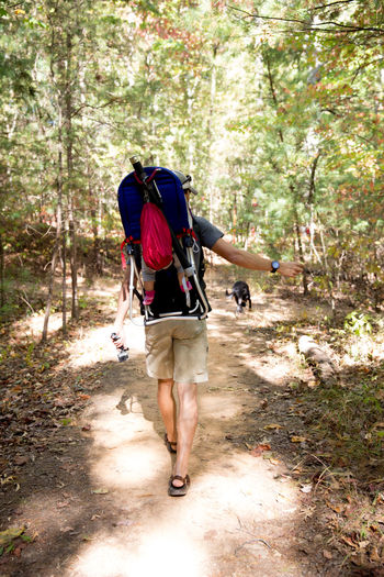 Hiking with child Baby Backpacking Camping Exercise Family Fatherhood Moments Fun Adventure Backpack Child Childhood Childhood Memories Father Father And Daughter Forest Full Length Hiking Nature Outdoors People Real Life Real People Reality Sunshine Walking