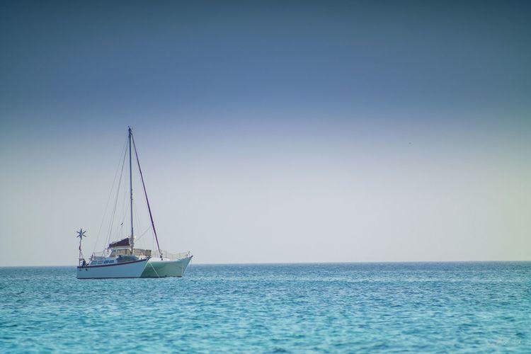 Catamaran sailing in sea against sky