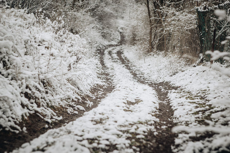 EOS Hungary🇭🇺 Nature Nature Photography Road Winter Snow ❄ Snowy Road Winter Winter Road Wintertime Canon Cold Temperature Eos1300d Hiking Adventures Nature No People Outdoors Snow Snow Covered Snowy Day The Way Forward Tire Track Tree Vintage Lens On Modern Camera Winter
