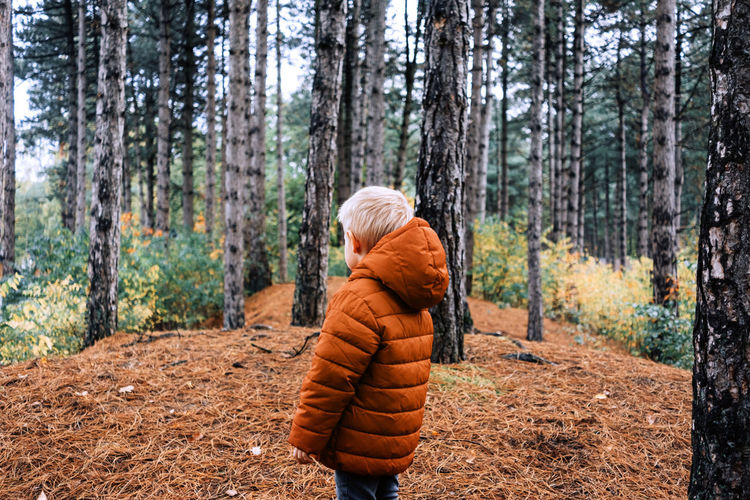 Child standing on tree trunk in forest