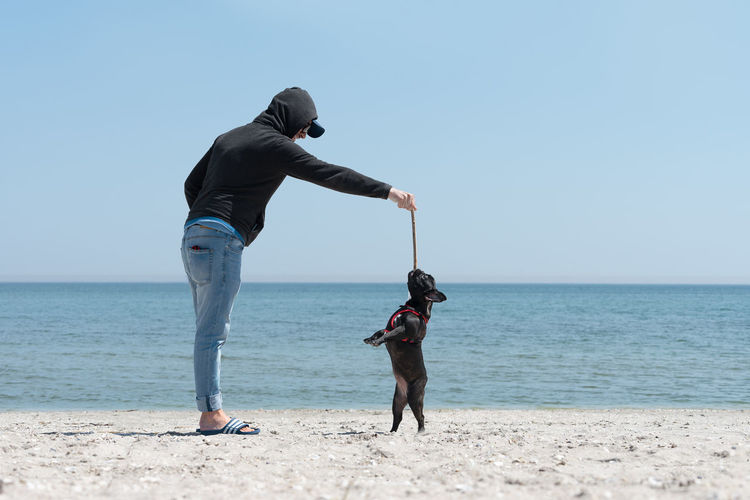 Side view of man playing with dog at beach against clear sky during sunny day