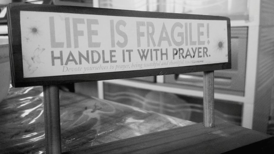 Life is fragile! First Eyeem Photo