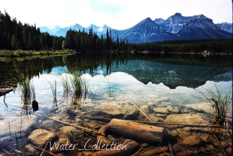 Water_Collection picture of the day! Water_collection Landscape_Collection EyeEm Nature Lover EyeEm Best Shots
