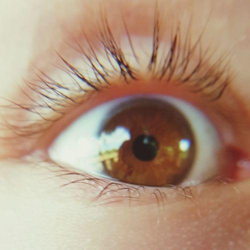 Closeup Human Eye Eyesight Close-up Iris - Eye Kids Eye Perpective