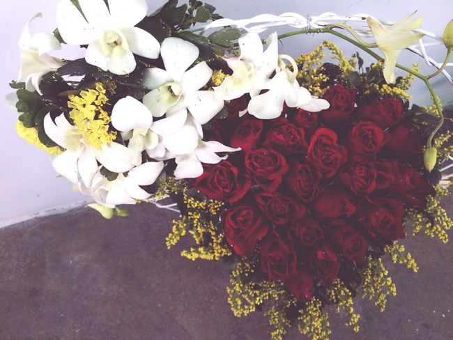 Happy women's day ! Flowers Gifts ❤ Khodi♡