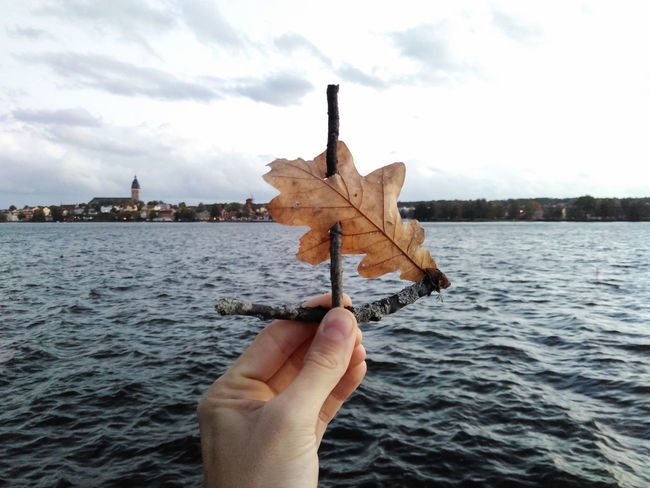 Boat Dreaming Escape Focus On Foreground Getaway  Holding Leaf Left Hand Longing Minimal Overcast Sail Sailing Sticks Symbol Travel Water Windy