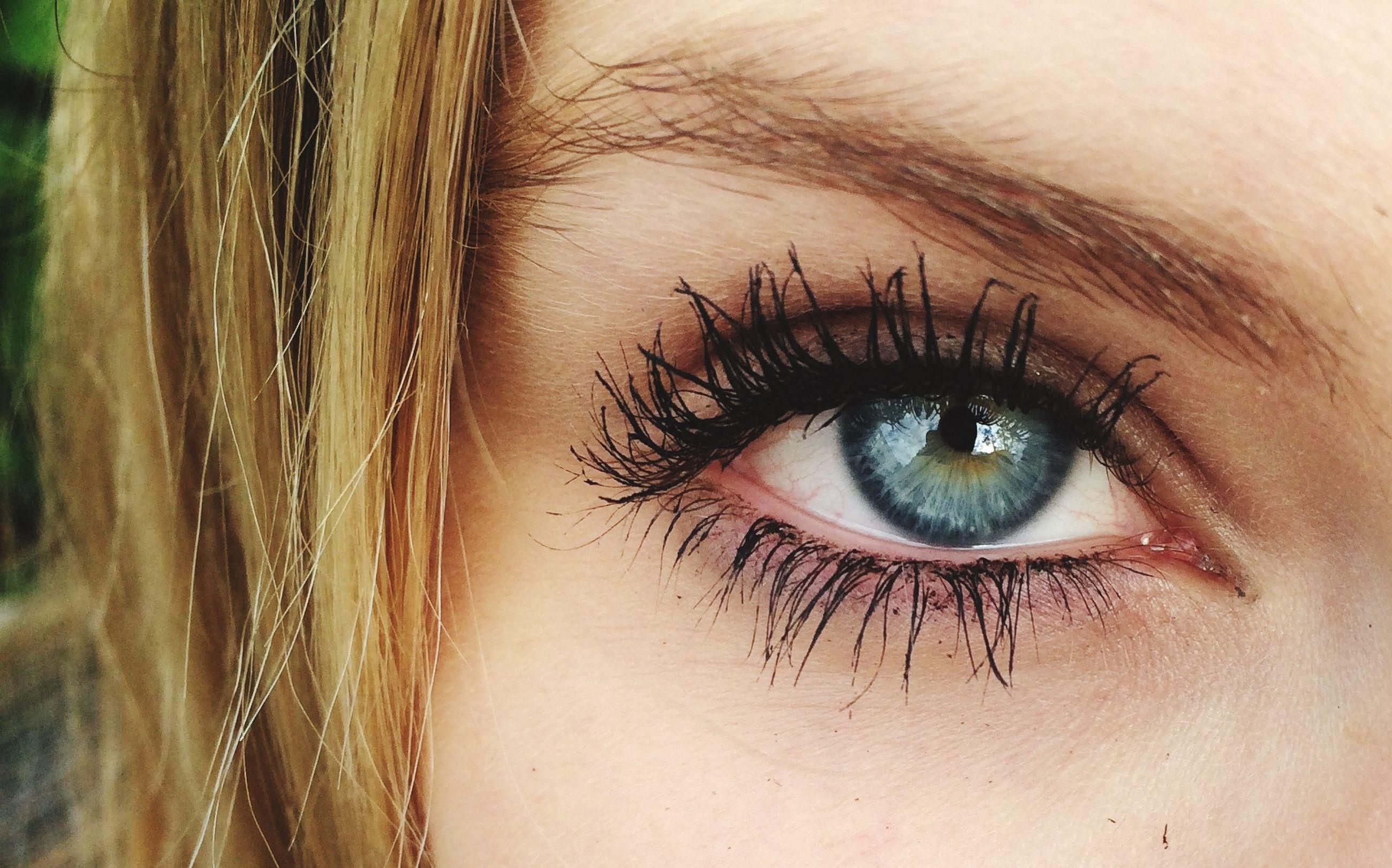 human eye, eyelash, close-up, eyesight, looking at camera, human skin, portrait, sensory perception, human face, iris - eye, eyeball, eyebrow, part of, headshot, extreme close-up, lifestyles, vision