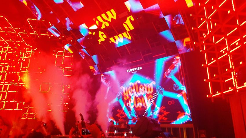 One Wild Night Party Yellowclaw Club Taking Photos Enjoying Life Check This Out
