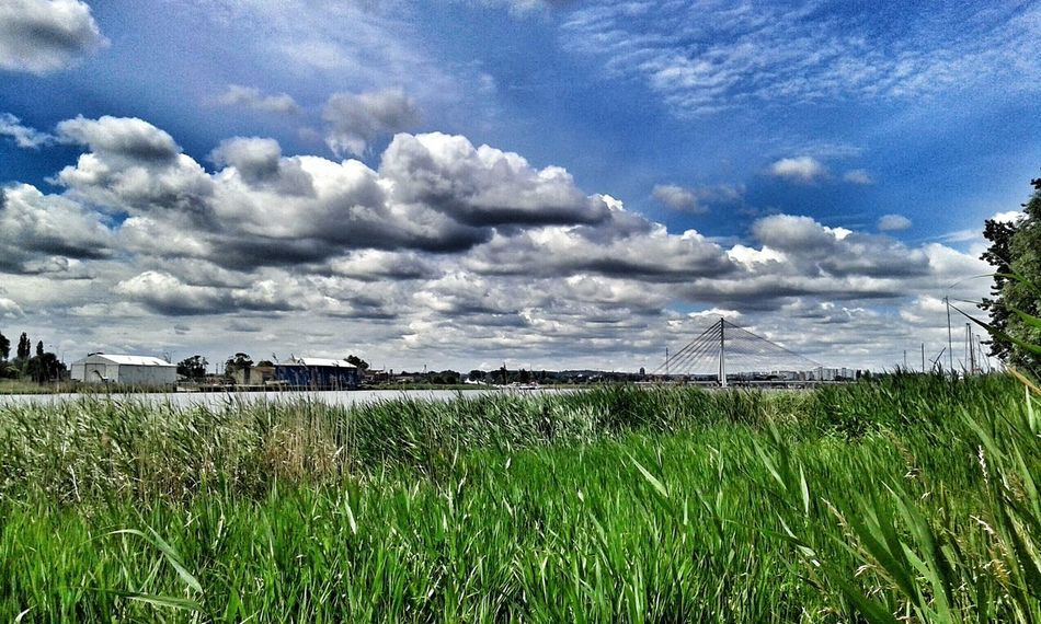 Nature Sky Clouds Bridges