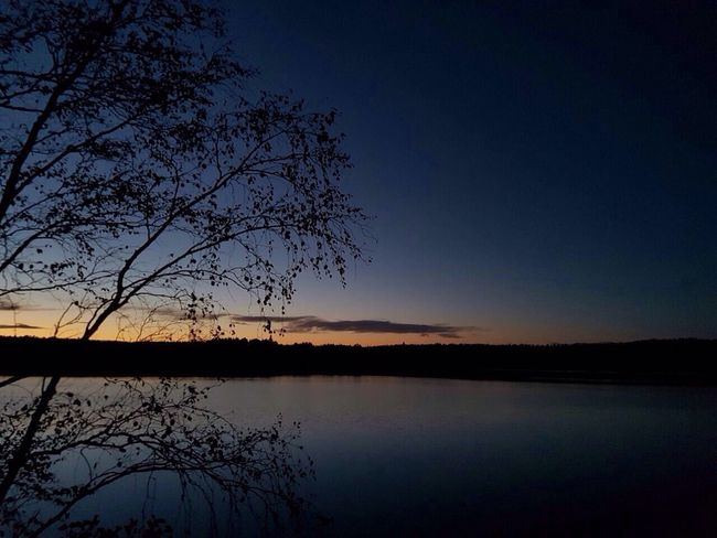 Happy Place Nature Blue Cloud Sky Outdoors Waterfront Lake Silhouette Tree Water Tranquil Scene Scenics Tranquility Sunset Beauty In Nature Reflection Nature Growth Branch Calm Majestic No People Tourism