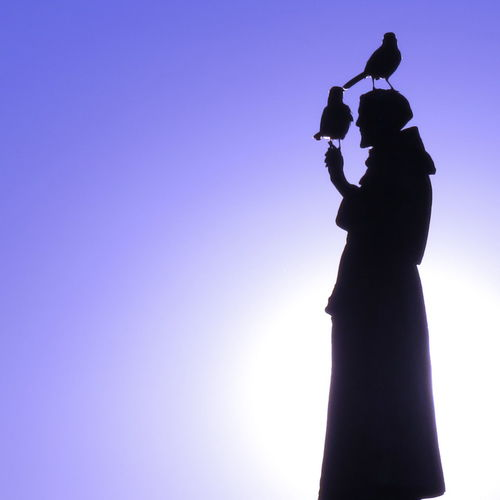 Statue of St Francis in Serra do Canastra, Brazil with two live birds resting on it Backlit Birds Manipulated Outdoors Sculpture Silhouette St Francis Statue