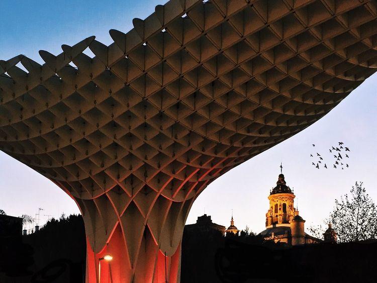 Metropol Parasol, Sevilla. AMPt_community Youmobile EyeEm Best Shots EyeEm Best Shots - Architecture Awesome Architecture NEM Architecture Modern Architecture Metropol Parasol Architecture Mobilephotography