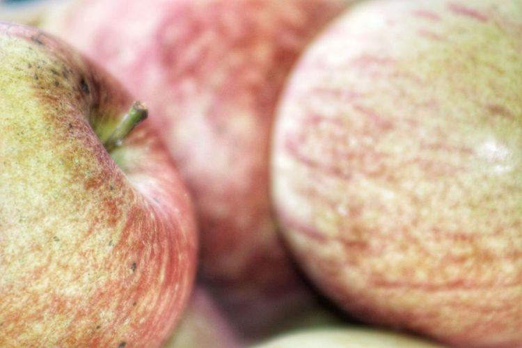 Streamzoofamily Fruit Apple Canon