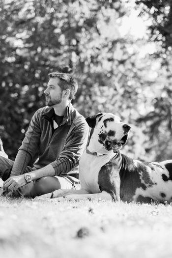Man sitting by dog on grassy field