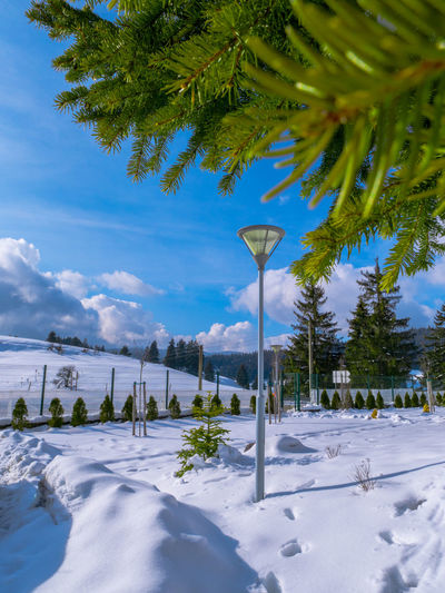 Beauty In Nature Bulgaria Cold Temperature Day Growth Landscape Mountain Nature No People Outdoors Pamporovo Pamporovo, Bulgaria Scenics Ski Resort  Sky Snow Tranquil Scene Tranquility Tree Winter First Eyeem Photo