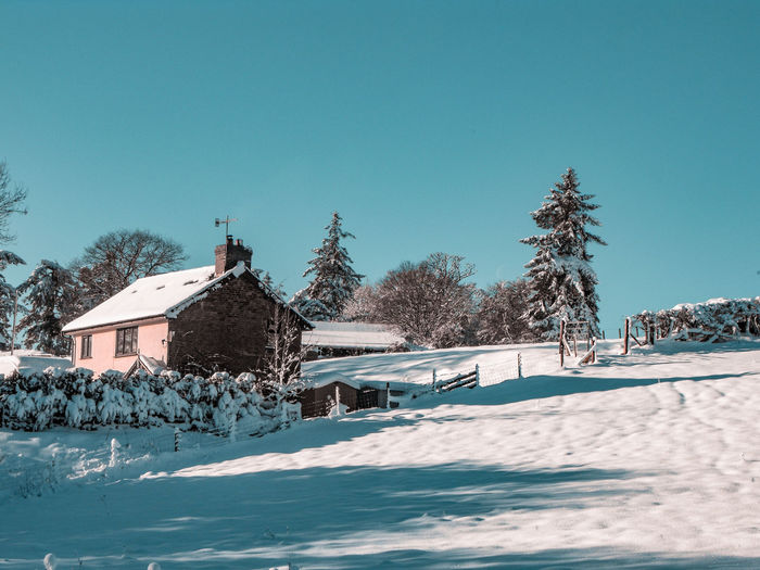 Wales in Winter Cold Temperature Winter Wonderland Little House Hill Wales UK Low Sun Tree Shadow Countryside Trees Wales Golden Hour British Farmland Farm Cottage Field Fieldscape Blue Sky Snow Cold Temperature Winter Rural Scene Tree Snowing Blue Sky Architecture Deep Snow Snowdrift Extreme Weather