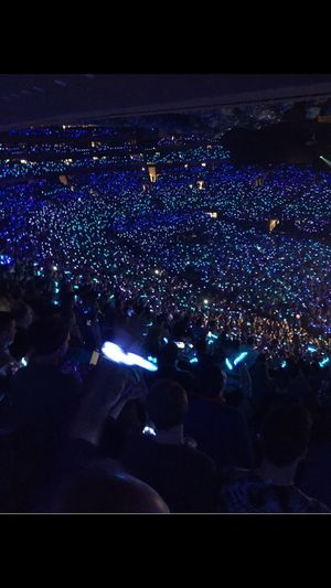 Phish show New Year's Eve Large Group Of People Night Illuminated Crowd Audience Togetherness Music