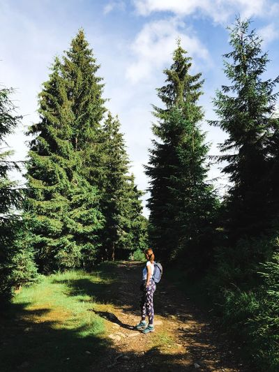 Full length of woman standing amidst trees against sky