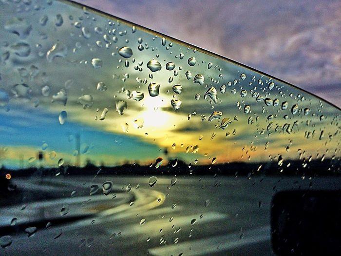 Water Mornings
