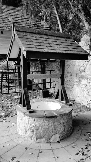 BLACK AND WHITE 13 Tree Built Structure Day No People Outdoors Architecture Nature Wishing Well