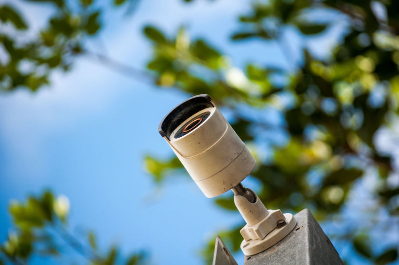 Low Angle View Of Security Camera Against Tree
