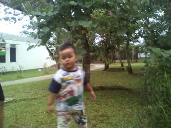 Childhood Blurred Motion Motion Children Only Child One Boy Only One Person Boys Playing Fun Casual Clothing Males  Enjoyment Front View Outdoors Tree People Cute Day Grass