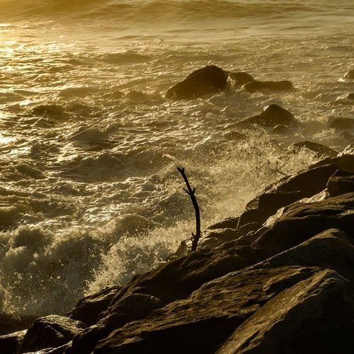 Enjoying the sounds of the sea Sea Water Ocean Wave Waves Blue Ripple Ripples Nature Beautiful Horizon Est Oceano Onda Seaside Sky Clouds Cloud Seascape Ignaturale Seascapes Natur Irox_water Ic_water Tagsta tagsta_nature like4like