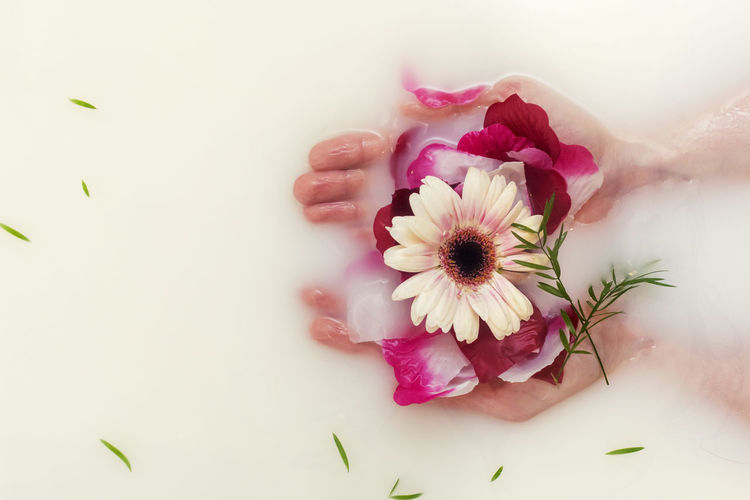 Close-Up Of Person Holding Flowers In Bathtub