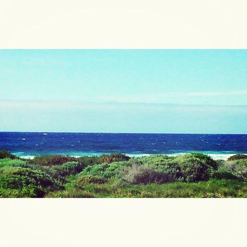 El gran azul mientras yo trago su delicioso olor..... La brisa me trae buenas noticias xD Relaxing Enjoying The Sun Sea