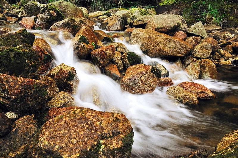 Stream Beauty