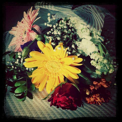 MyBoyFriend Love Flower Happy :)