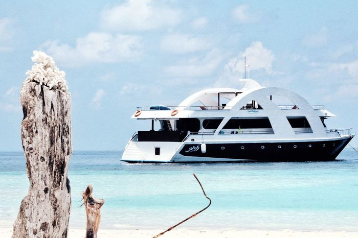 HamathiSafari Beach Cruise VirginIslands Holiday Eyecamphotography Beautiful Nature Aroundtheworld United Arab Emirates maldives
