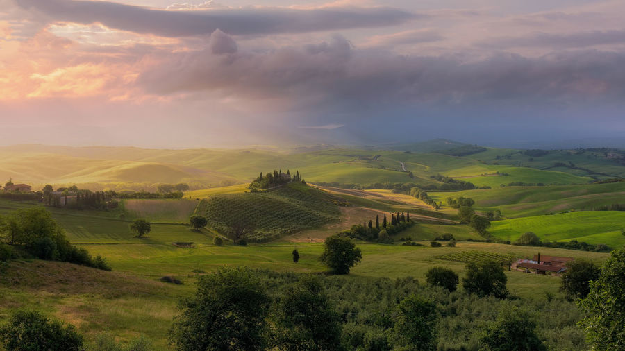 Scenics - Nature Landscape Cloud - Sky Environment Beauty In Nature Sky Tranquil Scene Plant Tranquility Rural Scene Field Land Tree No People Nature Non-urban Scene Idyllic Outdoors Rolling Landscape Green Color Agriculture Belvedere Valdorcia Val D'orcia Tuscany Countryside First Eyeem Photo