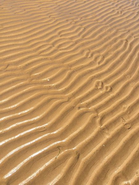 Omaha sand patterns Waves Ripples Patterns In Nature Sand Patterns Patterns Sand Pattern Sand Beach Sand Dune Backgrounds Nature Full Frame Pattern