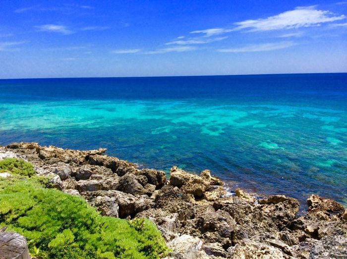 Cozumel Cozumel, México Island Tropical Island Tropical Climate Tropics Quintana Roo Caribbean Sea Sea Sky Clear Water Sky And Clouds Water Rocky Coastline Plant Growth Color Green Color Blue Horizon Over Water No People Perspectives On Nature Mexico An Eye For Travel