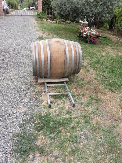 Barrique Monferrato Wine Barrel Day Wine Cask Outdoors Grass Field No People Tree Nature