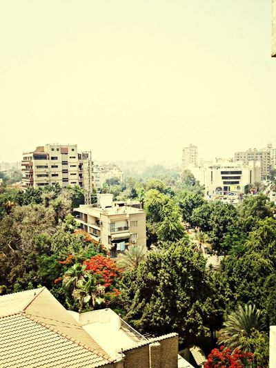 Maadi from above.