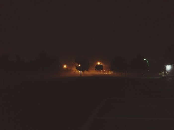 Foggy nights. Foggy Foggy Night Good Night Dog Walking