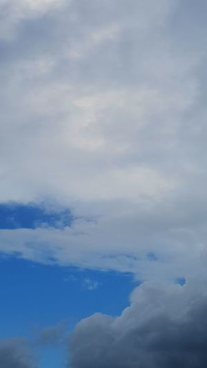 Blue Flying