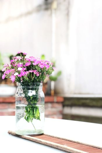 Flowering Plant Flower Plant Table Nature Vase Freshness Fragility Vulnerability  Glass - Material Container No People Focus On Foreground Indoors  Transparent Water Flower Arrangement Close-up Day Beauty In Nature