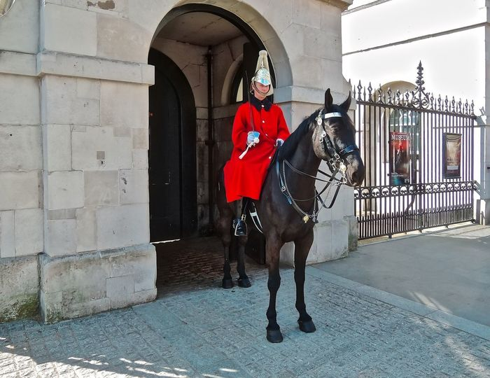 The Royal Horseguards at Whitehall in London. Building Building Exterior Built Structure Day England Horse London One Animal Outdoors Royal Horseguards Soldier Uniform United Kingdom Whitehall