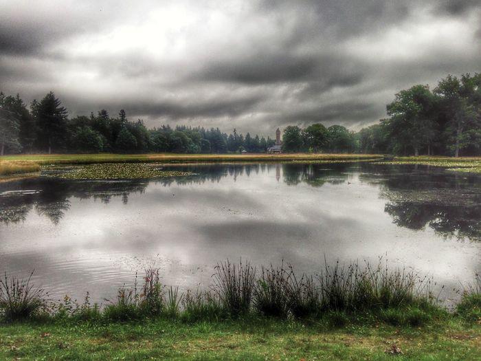 Netherlands Lake Hogeveluwe Nationale Park De Hoge Veluwe