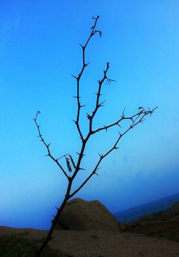 Its still beautiful Seashore Blue Beautiful HDR