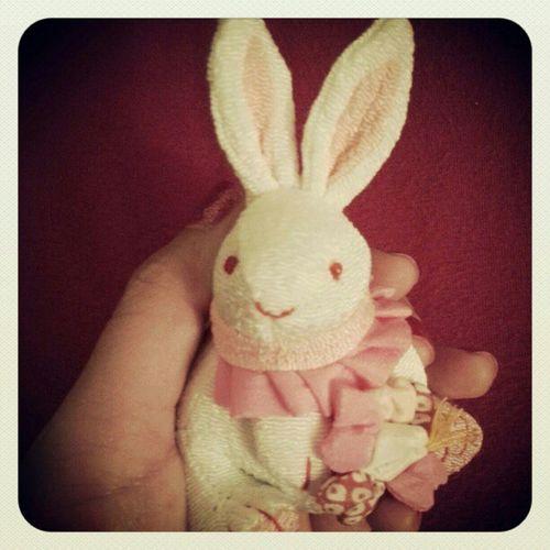 Newest addition to my keychain! I think I should stop >.< Rabbit Zodiac Goodluckcharm KAWAII plushie