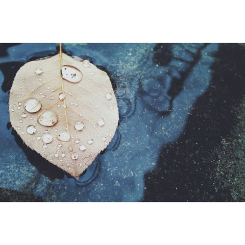RainyDay EyeEm