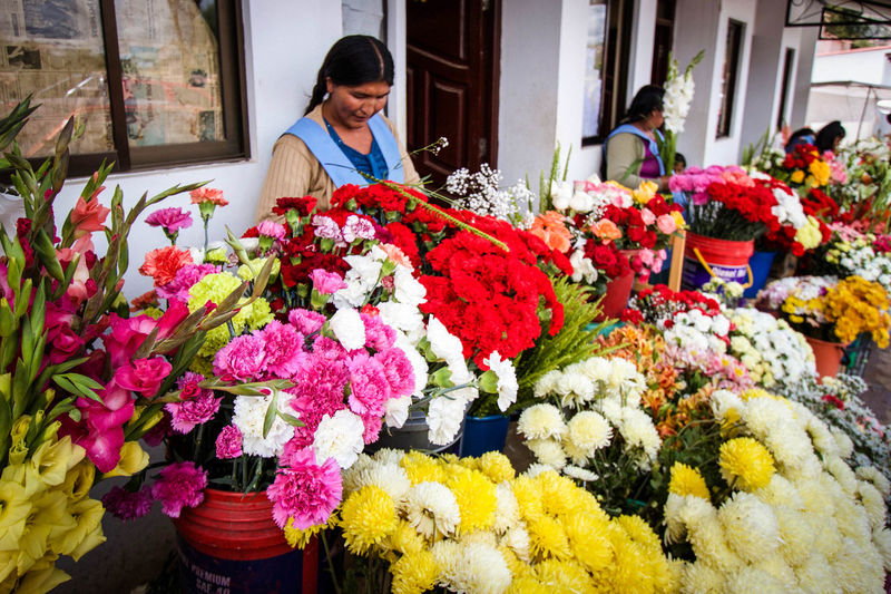 Bolivia Bouquet Business Choice Consumerism Customer  Day Florist Flower Flower Head Flower Market Flower Shop For Sale Fragility Freshness Multi Colored Nature Only Women Outdoors Retail  Small Business Store Variation Women