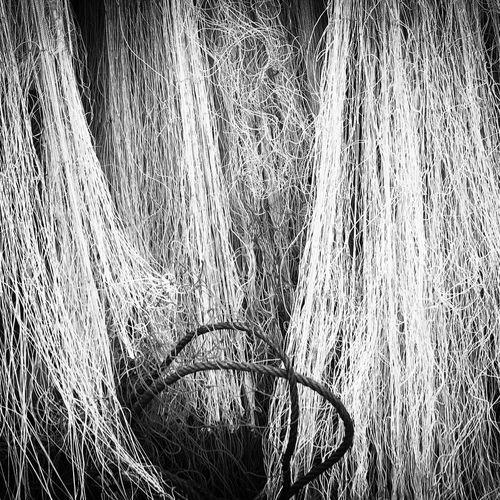 Fishing nets Koh Lanta Thailand Fishing Net Koh Lanta Thailand Thailand Photos Thailandtravel Thailand_allshots_BW Thailand Love Black And White Blackandwhite EyeEmNewHere EyeEmNewHere Breathing Space