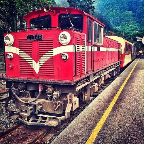 奮起湖車站 嘉義 奮起湖 車站 火車 沒有WiFi的一天 霧氣 耳根清靜 僅可撥打緊急電話 火車便當 Summer Vacation Village Landscape Life Beautiful Best  Colorful Taiwan Tried Traditional Travel Red